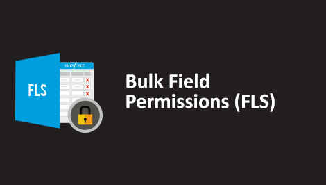 Salesforce Bulk Field Level Security